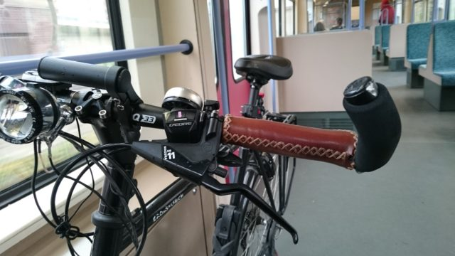 Surly in the S-Bahn, October 2016